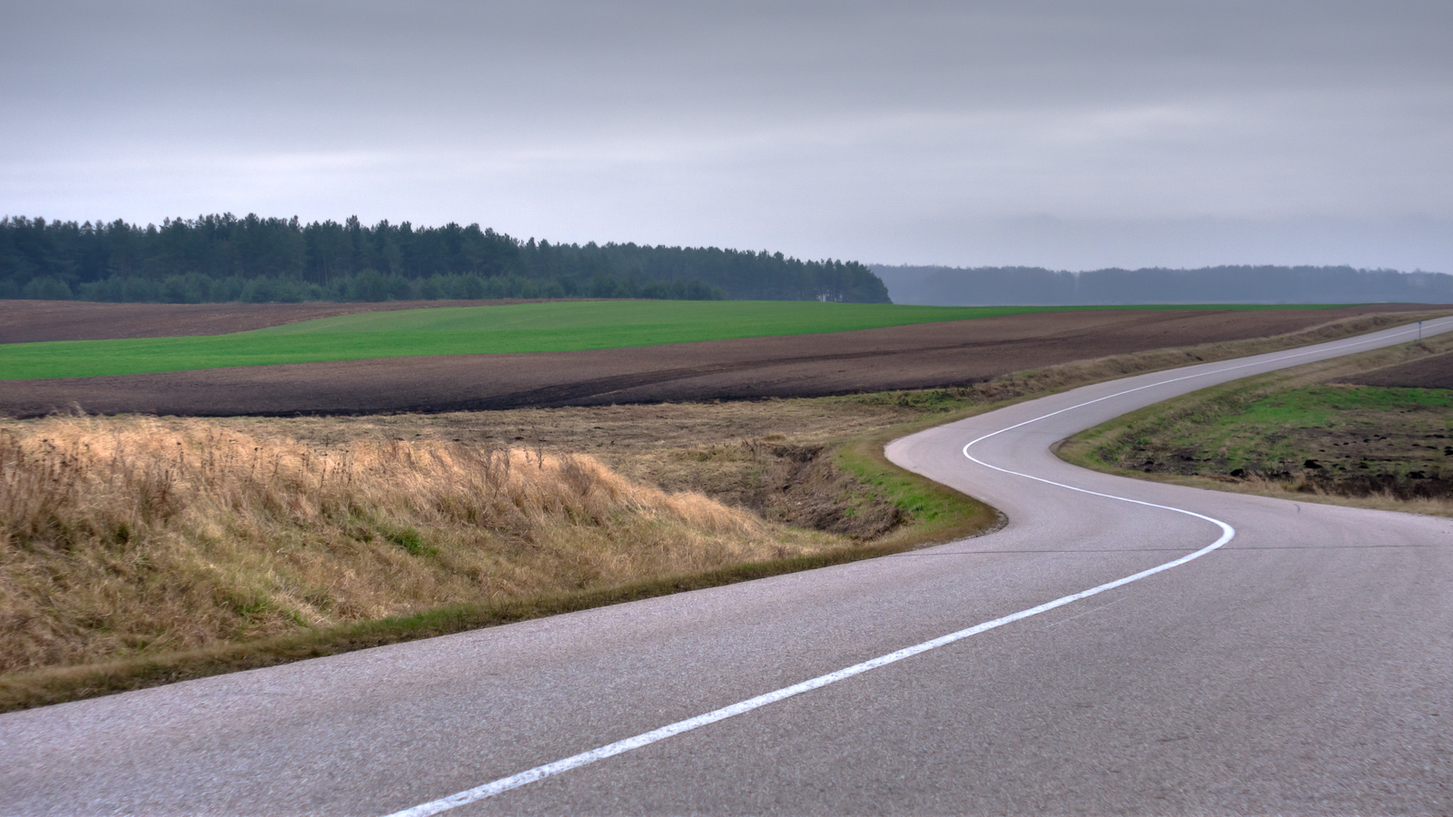 Cold windy day on the road in the countryside, near the lithuanian - polish border. Kalvarija, Lithuania.